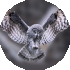 Owl s wings to help design aircraft wings